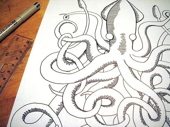 jd_squid_drawing